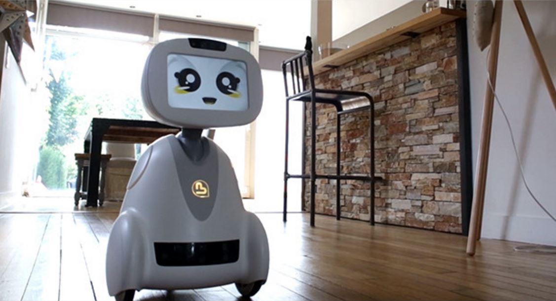 Introducing - Buddy the companion robot.